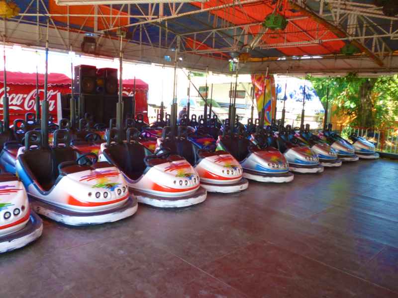 Bumper Cars at the Feria Internacional de David!