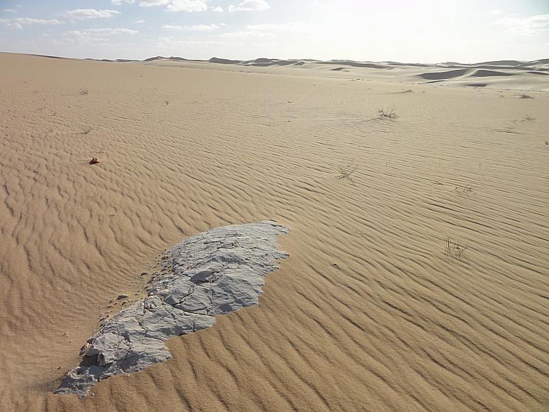 Siwa Oasis, Sahara Desert - Egypt
