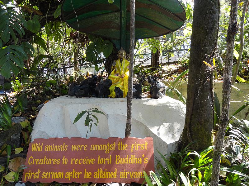 Darjeeling Zoo & Botanical Garden