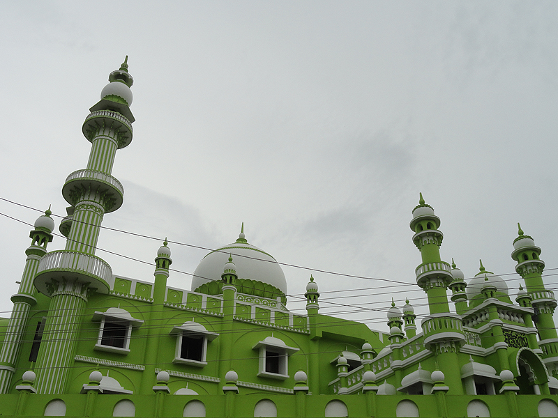 Lime Green Mosque, India
