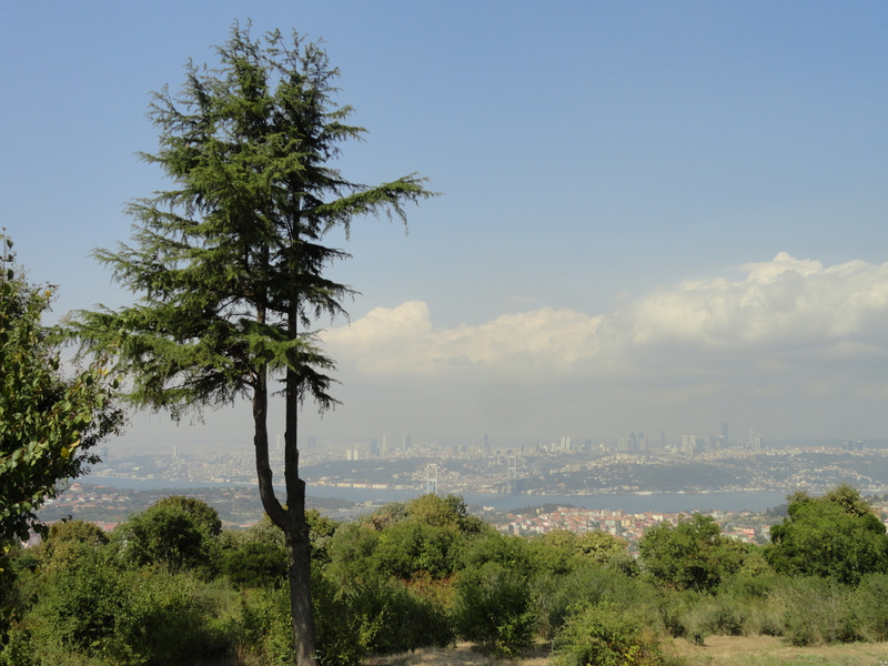 Istanbul from Camlica Hill at day.