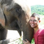 My experience and thoughts on riding elephants in Chiang Mai.
