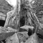 Exploring the temples of Angkor Wat in Black & White.