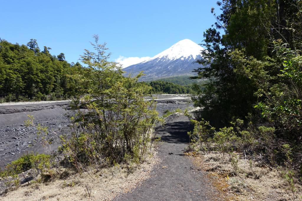 hiking in Vicente Perez Rosales National Park, Puerto Varas, Chile